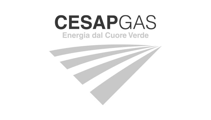 1-cesap-gas